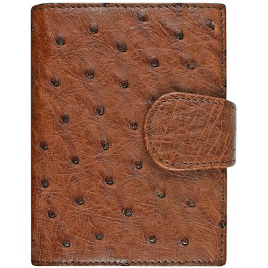 Genuine ostrich leather exclusive card holder OSCC501E Peanut