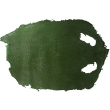 Genuine stingray skin STSKIN4-R Emerald Green L003. Round shape, not sanded.