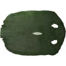 Genuine stingray skin STSKIN-R Dark Green D001. Round shape, not sanded.